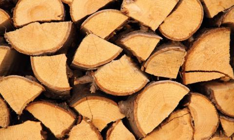 Хорошие дрова долго горят, дают много тепла и мало дыма