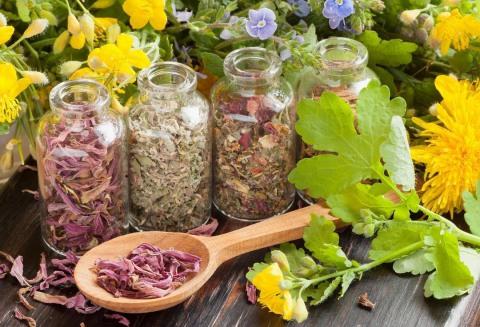 Хранить целебные травы лучше в стеклянных банках.
